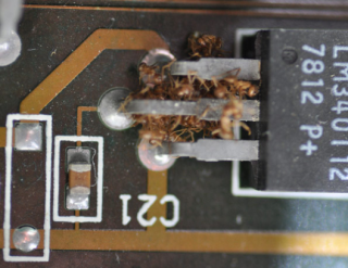 Crazy ants destroying electronics
